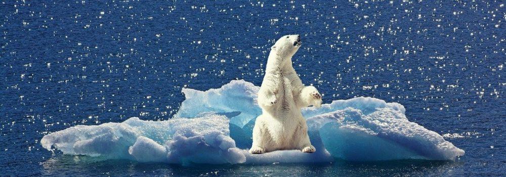 Κλιματική αλλαγή : ώρα μηδέν